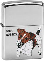 JACK RUSSELL 22536