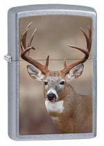 Deer Zippo 25454