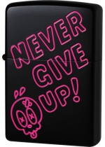 Never Give Up 26474
